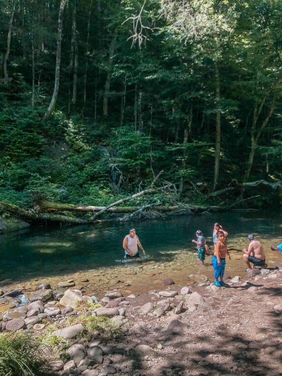 swimming in another part of the blue hole along a stream down the catskills